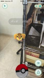 IMG_6282iMage-Tools_